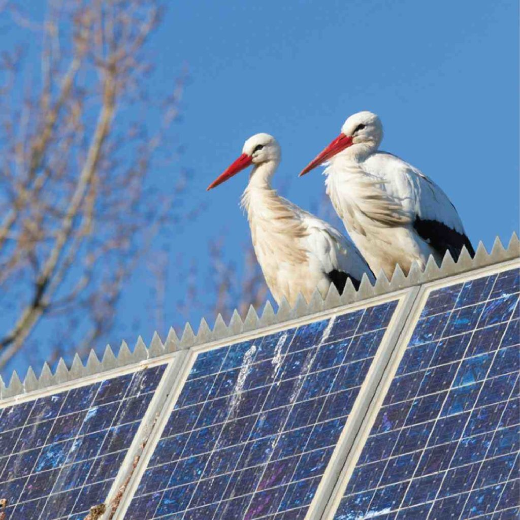 92003 Solar Installers
